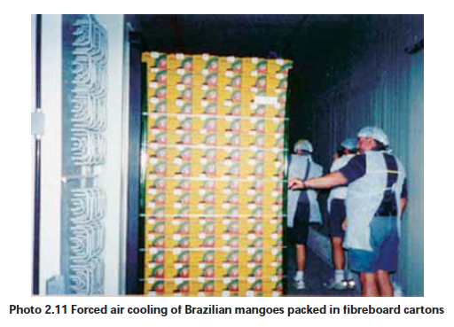 """Forced air cooling, Source: """"Good practice in the design, management and operation of a fresh produce packing-house"""", Food and Agriculture Organization of the United Nations, Regional Office for Asia and the Pacific, Bangkok, 2012"""